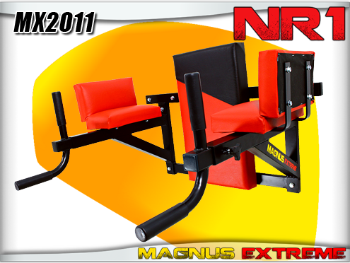 Dips and push up handles Magnus Extreme MX2011